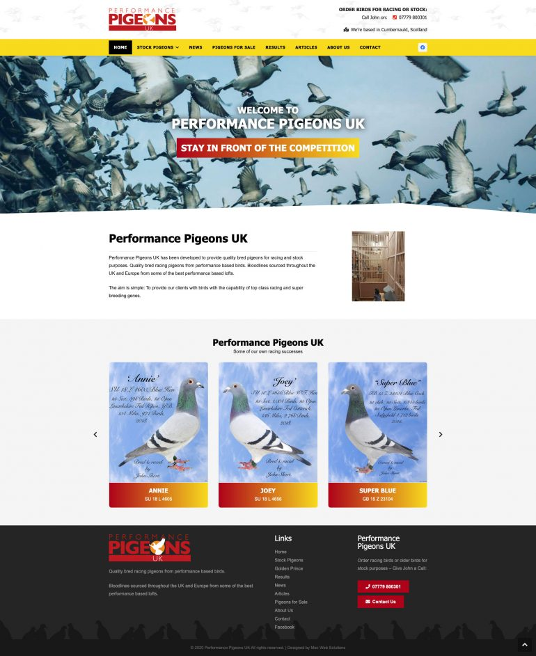 Performance Pigeons UK